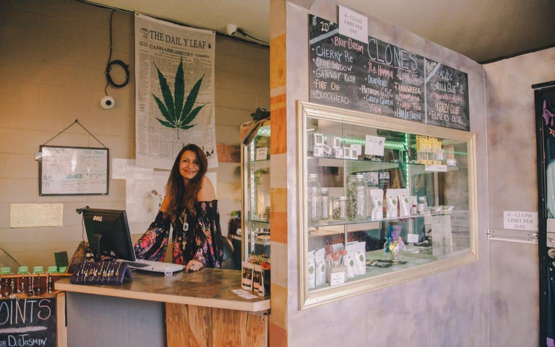 How to Talk to Your Budtender