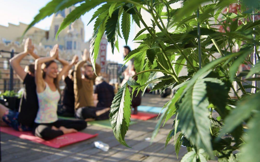 Namaste, Cannabis Yoga